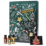 Mexican Tears - Scharfe Sauce Adventskalender mit 24 unterschiedlichen Chilisaucen in wiederverschließbaren Glasflaschen, limitierte Auflage [24x20ml Chili Sauce]